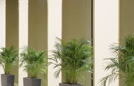 Doniczki do biura rośliny eko biuro firma urząd
