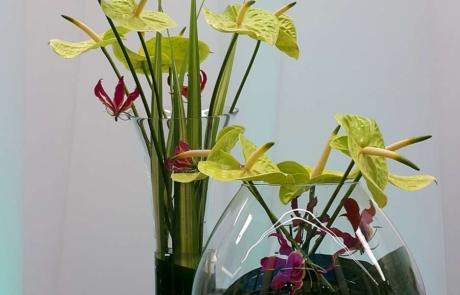 Oddychające przestrzenie, kwiaty do biura