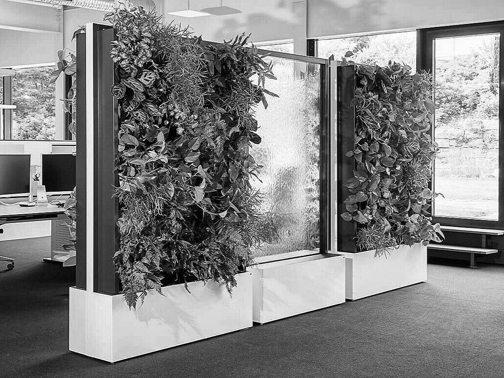 Kolekcja – Zielone Ścianki
