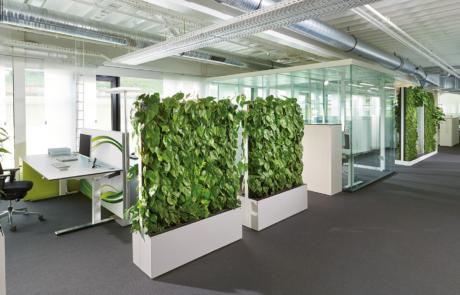 Zieleń w pracy zielone miejsca