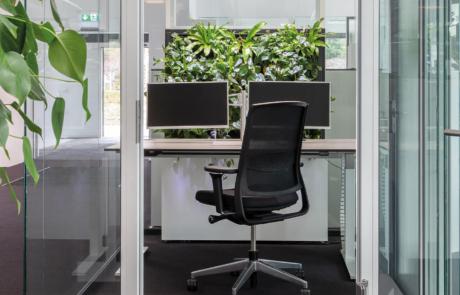 Zielona ściana środowisko naturalne w miejscu pracy