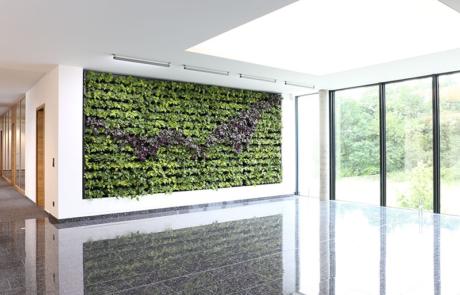 Zielona przegroda przestrzeń biurowa